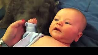 Смешные дети и животные Коты и дети