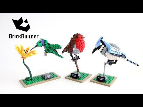 Vidéo LEGO Ideas 21301 : Les oiseaux