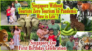 Singapore WITHOUT Tourism SIngapore Zoo Vlog Anika's First Birthday Celebration Superprincessjo