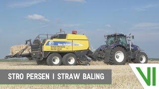New Holland T7.270 | BB950A | Stro persen | Baling straw | Biddinghuizen