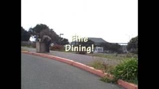 Eureka, CA Tourism Video -- SPOOF