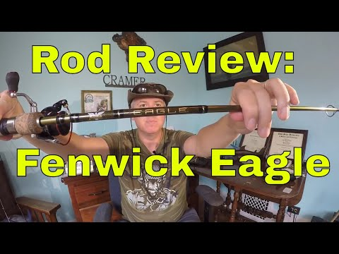 Spinning Rod Review: Fenwick Eagle