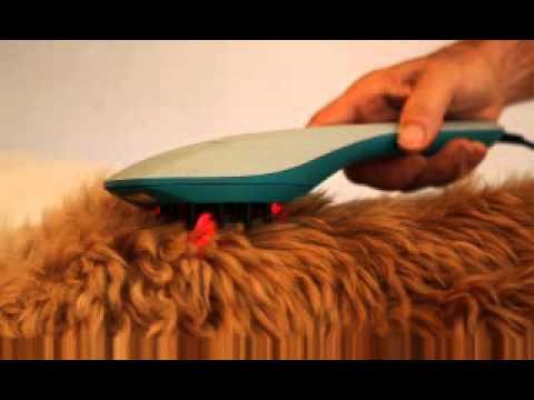 Die ätherischen Öle das Haar die Abspülung