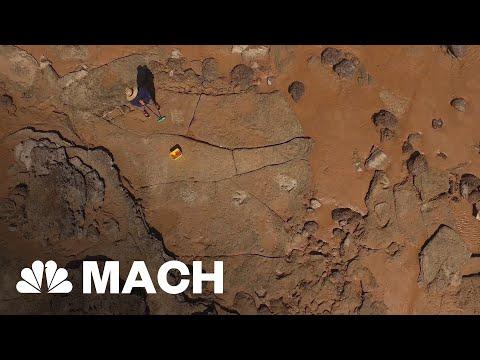 Prehistoric Prints: 'Unprecedented' Dinosaur Discovery In Australia | Mach | NBC News