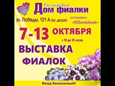 ВЫСТАВКА ФИАЛОК 7-13 октября,Самарский Дом фиалки.