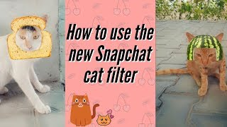 How to use the new Snapchat cat filter