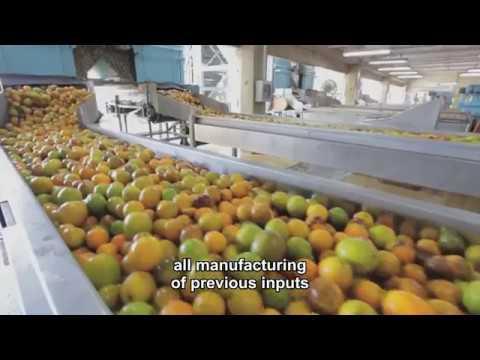 Orange Brazilian Asset