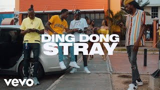 DING DONG - STRAY [OFFICIAL VIDEO]