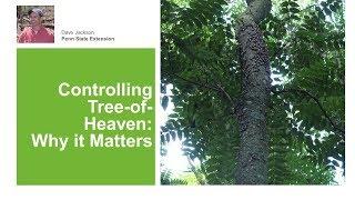 Tree-of-Heaven: Why It Matters