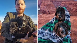 Man Rescued Two Dogs Abandoned In The Middle Of The Desert. Now They're Traveling The World Together