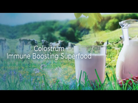 Feature Video Colostrum Immune Boosting Super Food
