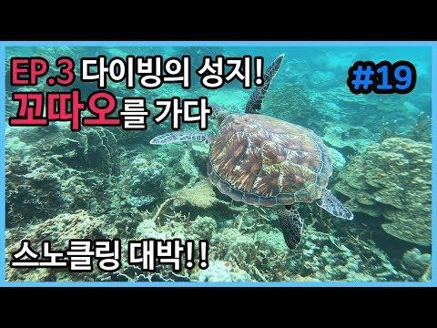 [태국 여행] EP.3 다이빙의 성지 꼬따오를 가다