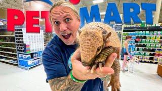 TAKING MY ARMADILLO TO PETSMART!! | BRIAN BARCZYK