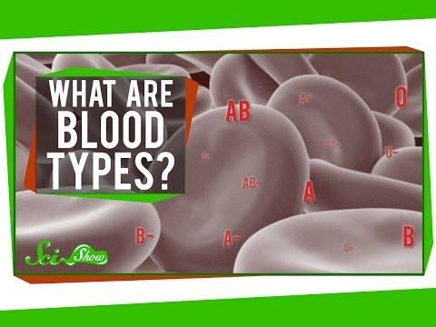 แบคทีเรียหรือพยาธิเป็นตัวย่อยสลาย