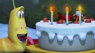 LARVA | Le gâteau d'anniversaire | Dessin animé | Dessins animés pour enfants | LARVA Officiel HD
