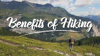 Incredible Health Benefits of Hiking