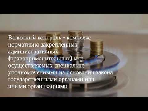 Общие понятия валютного контроля.