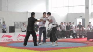 preview picture of video 'Jiaozuo 2011 Push Hands'