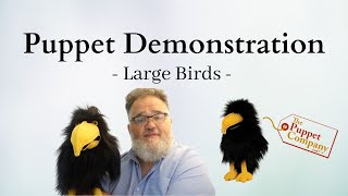 Large Birds - Puppet Demonstration by The Puppet Company
