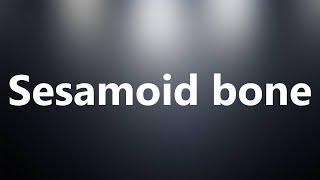 Sesamoid bone - Medical Definition and Pronunciation