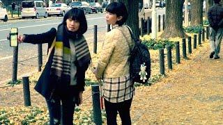 Япония. Прощание с осенью. Желтая улица.