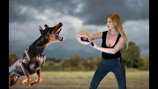 WORLD'S DEADLIEST PROTECTION GUARD DOGS - £50,000 THREAT KILLERS
