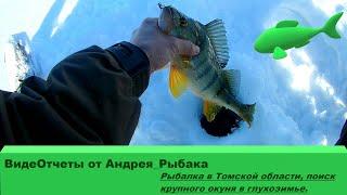 Сезон рыбалки в томской области 2020