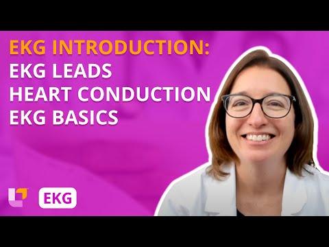 EKG Interpretation - Introduction - YouTube