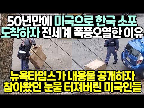 50년만에 미국으로 한국 소포 도착하자 전세계 폭풍오열한 이유
