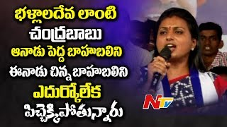 MLA Roja Sensational Comments on Chandrababu Naidu | Power Punch
