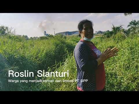 Tidak Bisa Panen Sawit karena Tercemar Limbah PKS PT SIPP, Roslin Ingin Deritanya Direspon Menteri LH Hingga Presiden Jokowi