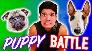 PUPPY INSTAGRAM BATTLE! *Who Will Win?!*