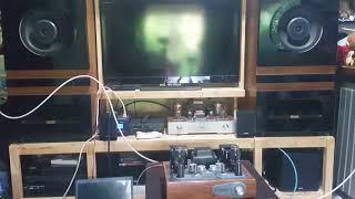 Test ECC83 Telefunken
