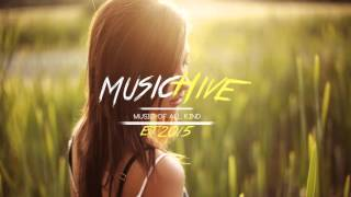 Bob Marley - No Woman No Cry (Lost Frequencies Bootleg)