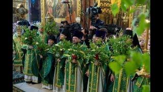 Почему на Троицу, 27 мая, нельзя купаться и зачем дома и храмы украшают березами