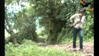 Reserva de Guisayote Honduras 29 01 2013