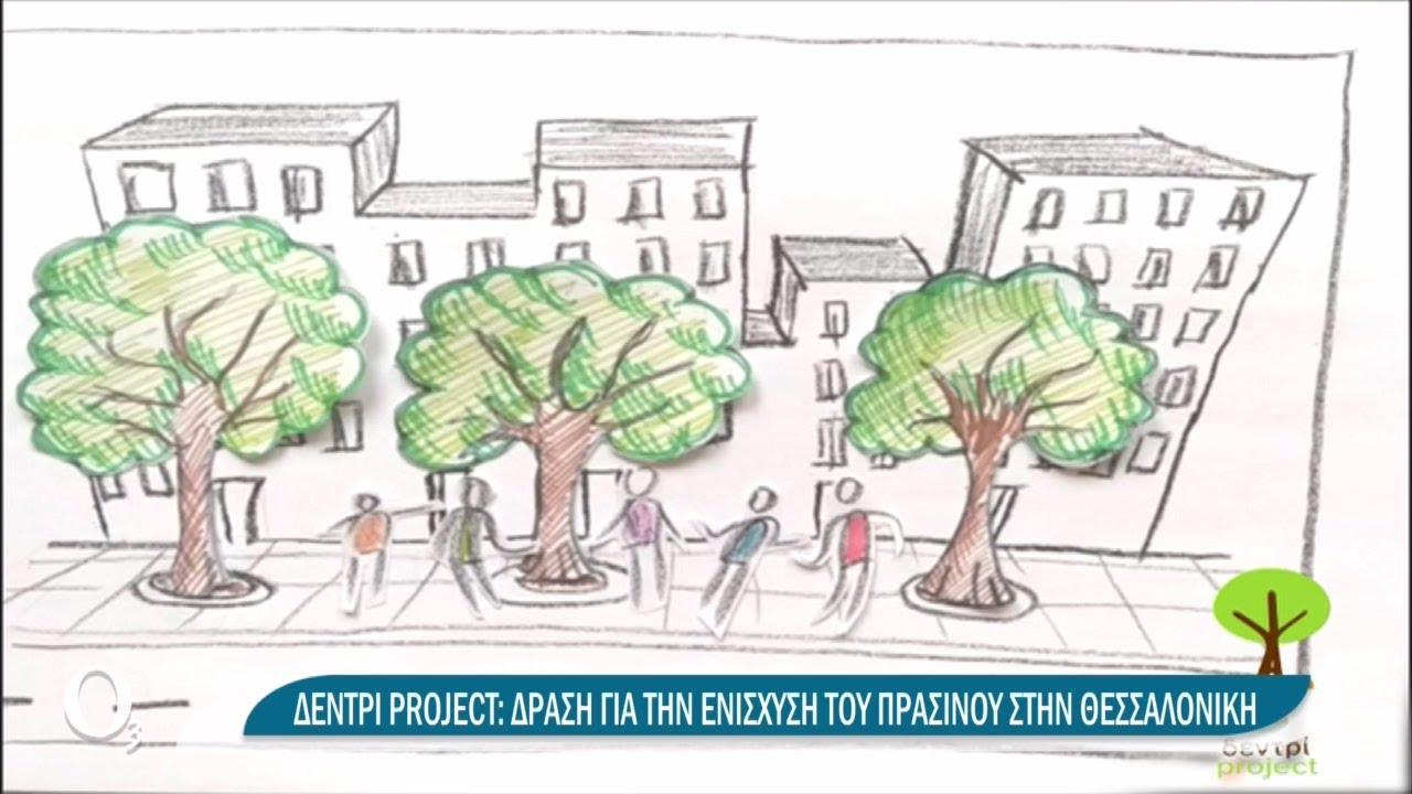 Το Δεντρί γεμίζει τις άδειες δενδροδόχους της πόλης | 02/04/2021 | ΕΡΤ