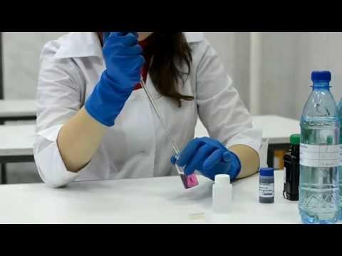 Лечение аденомы простаты при помощи каштана