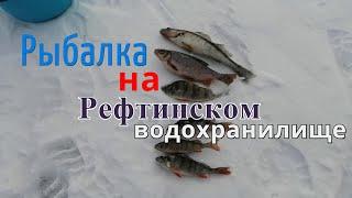 Отчет о рыбалке н тагил