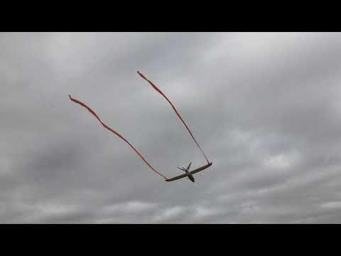 mini-talon-and-mini-goose-flights