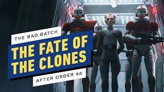 Star Wars The Bad Batch: What Happens to The Clones After Order 66? by IGN