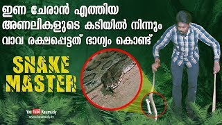 Wow ! Vava Suresh miraculously escapes from two vipers that came to mate | Snakemaster | Latest