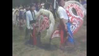 preview picture of video 'pangguyuban seni jaranan KUDA LUMPING SIDO MULYOREJO'