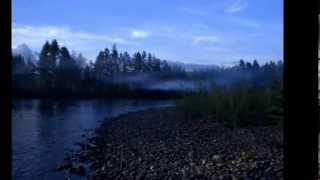Река рыбалка  Четыре времени года