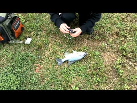 Spring Bass Fishing 2011-Grandpa's Pond in  Columbus, OH.wmv