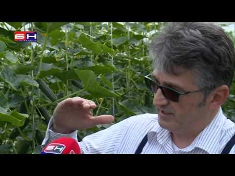 Kineski žbuka za hipertenziju kupiti u Moskvi