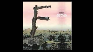 How Come You Never Go There by Feist | Interscope