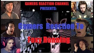 Gamers Reaction To Foxy Running Down The Halls