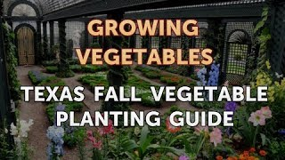 Texas Fall Vegetable Planting Guide