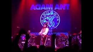 Whip in my Valise by Adam Ant